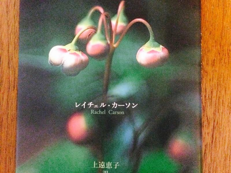 『センス・オブセンス・オブ・ワンダー』(1996年、新潮社)