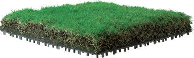 エコグリーンマット