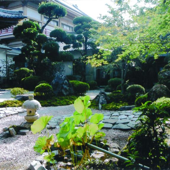 『何かちょっとした気品ある シンプルな庭をめざしています!!』もちお造園