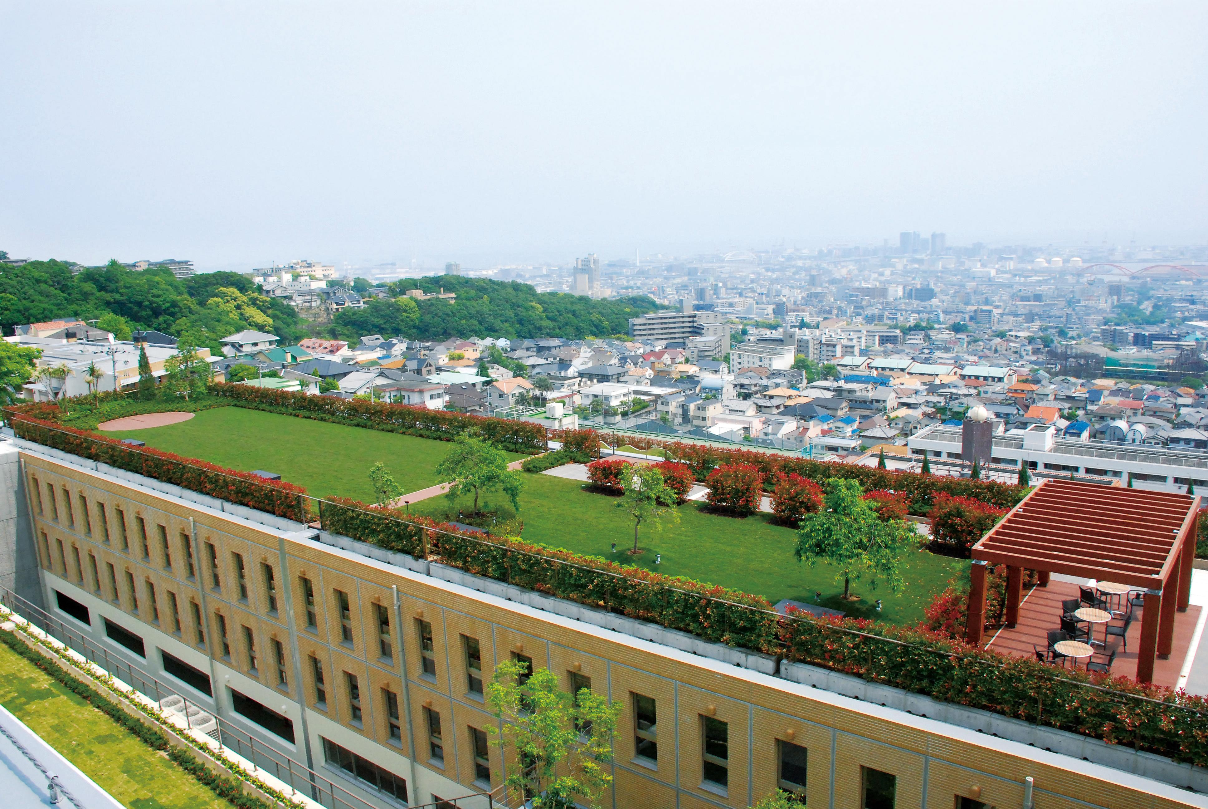 屋上や壁面の緑化が簡単に
